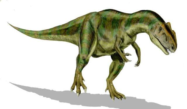 File:Allosaurus BW-1-.jpg