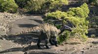 Scernosaurus