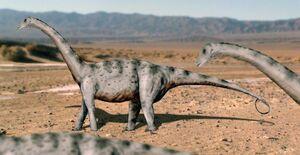 Tapuiasaurus NT