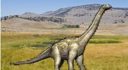 Alamosaurus px