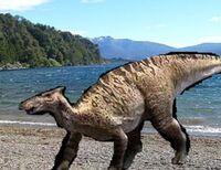 Saurolophus px