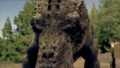 1x6 Gorgonopsid 12
