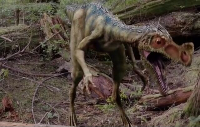 File:Ornitholestes.jpg