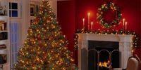 Christmas Joy for Nick and Judy