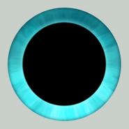 Cam eye d