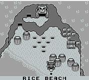 Rice beach