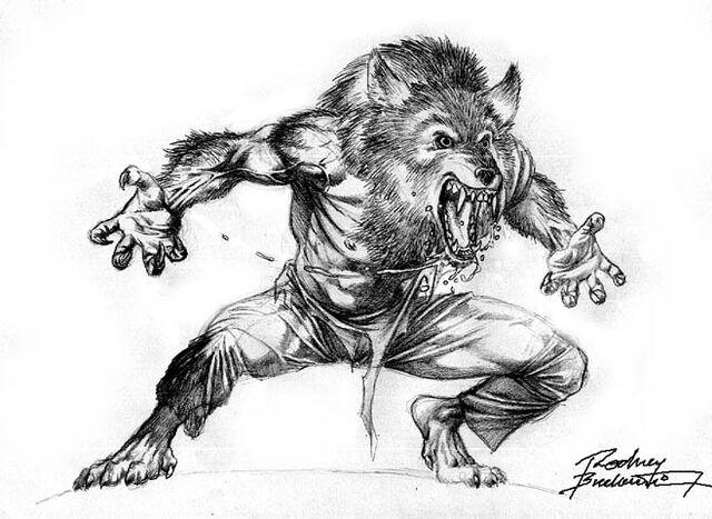 File:Werewolf by Rodney Buchemi by SKETCH JAM CAFE.jpg
