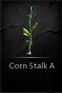 CornStalkA