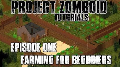PROJECT ZOMBOID TUTORIALS - 1 - FARMING FOR BEGINNERS