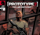 Prototype 2: The Labyrinth
