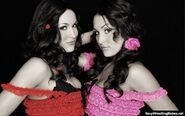Bella Twins.1