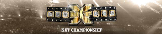 NXT Champ banner