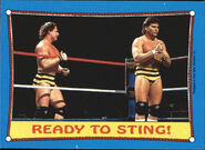 1987 WWF Wrestling Cards (Topps) Ready To Sting! 62