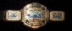 Xcite Heavyweight Championship