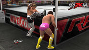WWE 2K14 Screenshot.3