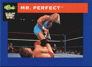 1991 WWF Classic Superstars Cards Mr. Perfect 29