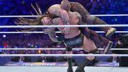 WrestleMania 33.104