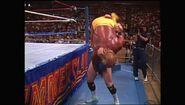 SummerSlam 1990.00053