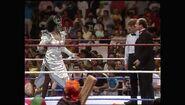 SummerSlam 1990.00014