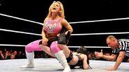 WWE WrestleMania Revenge Tour 2014 - Rotterdam.8