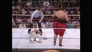 Survivor Series 1992.00031