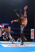 Wrestle Kingdom IX 5