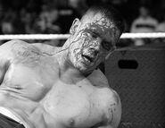 Royal Rumble 2007.27