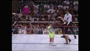 Survivor Series 1992.00007