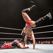WWE WrestleMania Revenge Tour 2016 - Sheffield 2