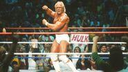 Hulk Hogan 35