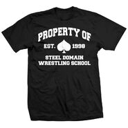 Ace Steel Property of Steel Domain Shirt