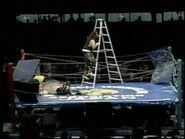 King of the Death Match 1995.00016