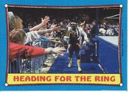 1987 WWF Wrestling Cards (Topps) Heading For The Ring 39