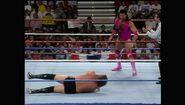 SummerSlam 1993.00002
