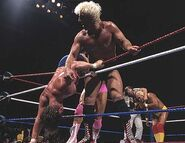 Royal Rumble 1992.2
