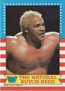 1987 WWF Wrestling Cards (Topps) Butch Reed 18