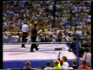 Wrestlefest 1988.00014