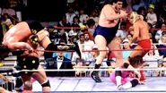 Royal Rumble 1990.22