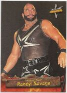 1999 WCW Embossed (Topps) Randy Savage 13