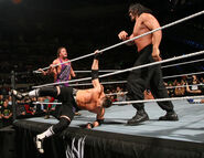 Royal Rumble 2007.31