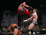 Royal Rumble 2006.13