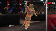 WWE 2K14 Screenshot.6