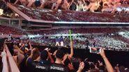 WrestleMania 33.134