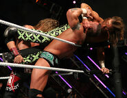Royal Rumble 2007.41