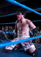 Jimmy Havoc - icw174