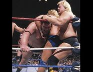 Royal Rumble 1989.2