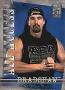 2002 WWF All Access (Fleer) Bradshaw 17