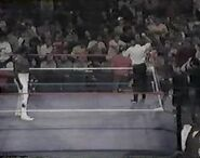 WWF The Wrestling Classic.00031