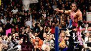 WrestleMania 13.15