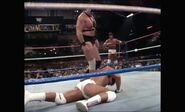 WrestleMania IV.00089